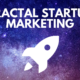 FRACTAL STARTUP MARKETING
